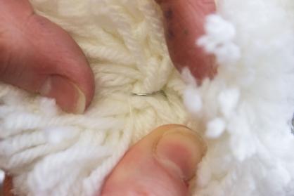 Sheep_28forweb