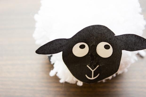 Sheep_32forweb