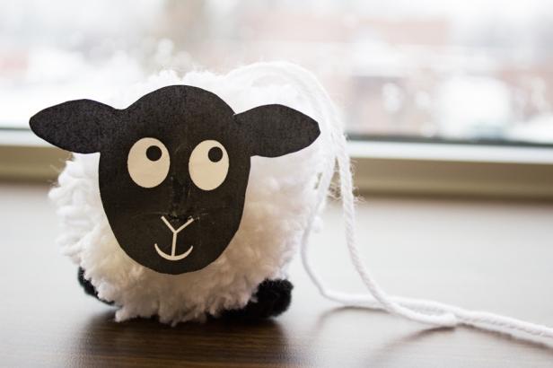 Sheep_33forweb