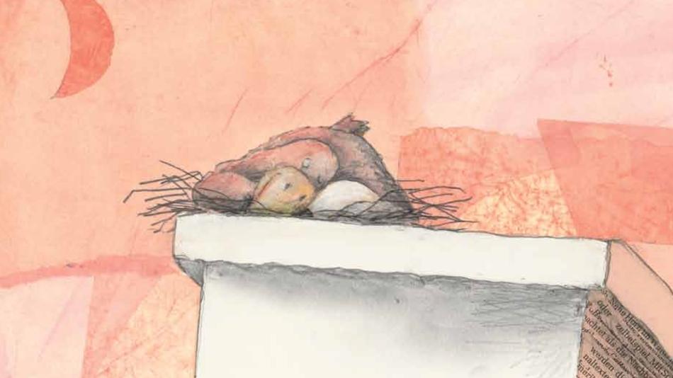 At-Night---bird-nest