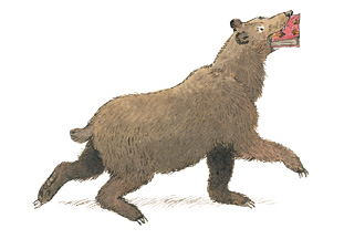 bear-featured