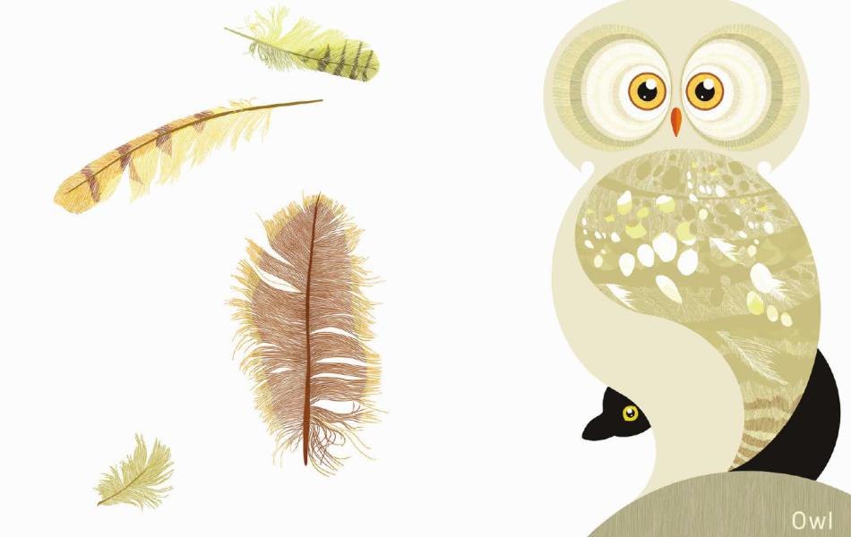Plume - Owl