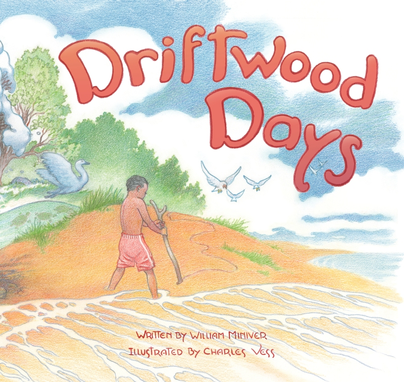 Driftwood days picture books for kids