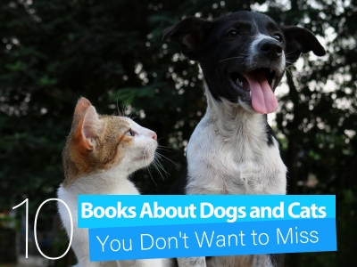 Kids books about dogs and cats childrens books illustrated books for children