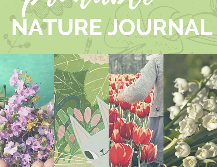 Free+Printable+nature+journal+for+the+book+A+Year+With+Mama+Earth+by+Rebecca+Grabill+Rebecca+Green
