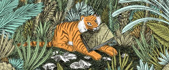 Panthera Tigris illustrated children's book