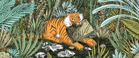 Panthera Tigris illustrated children's book